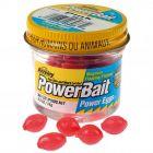 Berkley PowerBait Power Eggs Floating Magnum 40 Pack